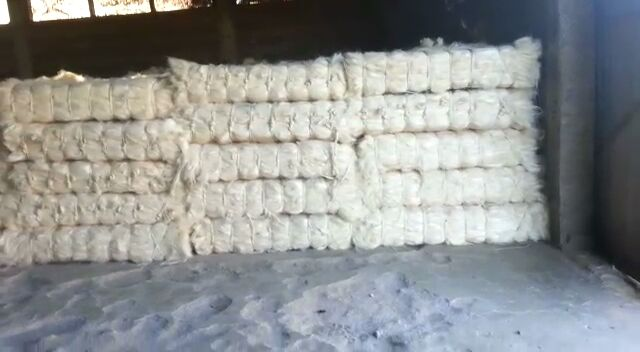 sisal fiber of kenyan origin with free samples